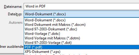 Word Datei in PDF umwandeln